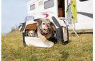 Am besten gewoehnt man seinen Hund schon vor der Reise an die Transportbox.