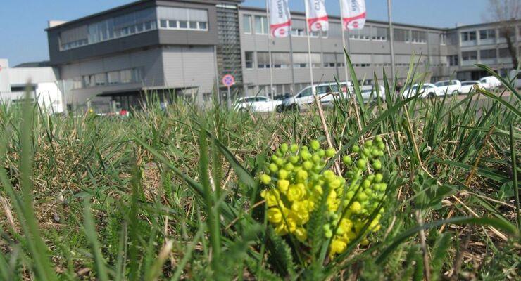 """Bürstner präsentiert den Fotowettbewerb """"Frühlingsgefühle"""" im sozialen Netzwerk Facebook und dem eigenen YouTube-Kanal"""