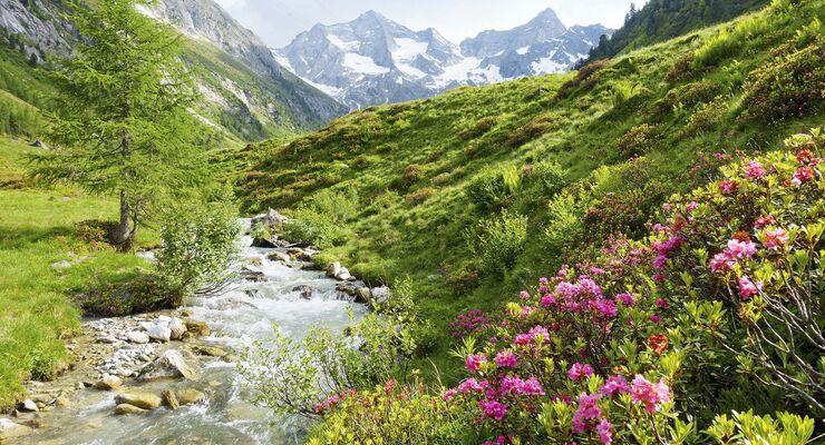 Wandern und trekking in skandinavien u das richtige equipment